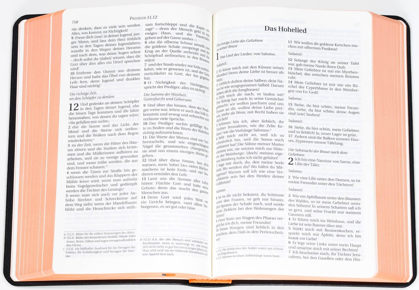 Schlachter 2000 – Taschenausgabe (Softcover, schwarz, Leder-Einband, Farbschnitt)