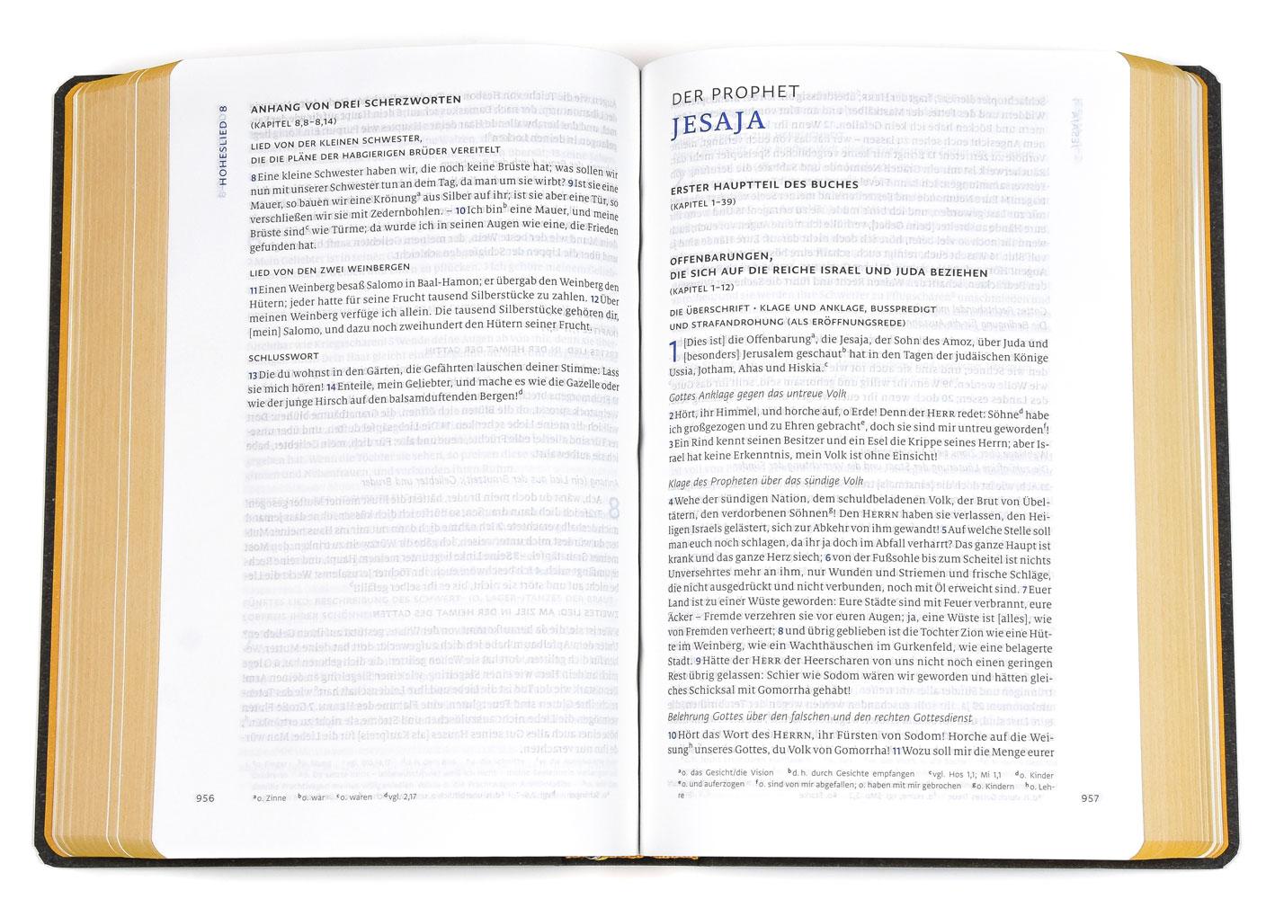clv_menge-2020-flexibler-umschlag_256019_3