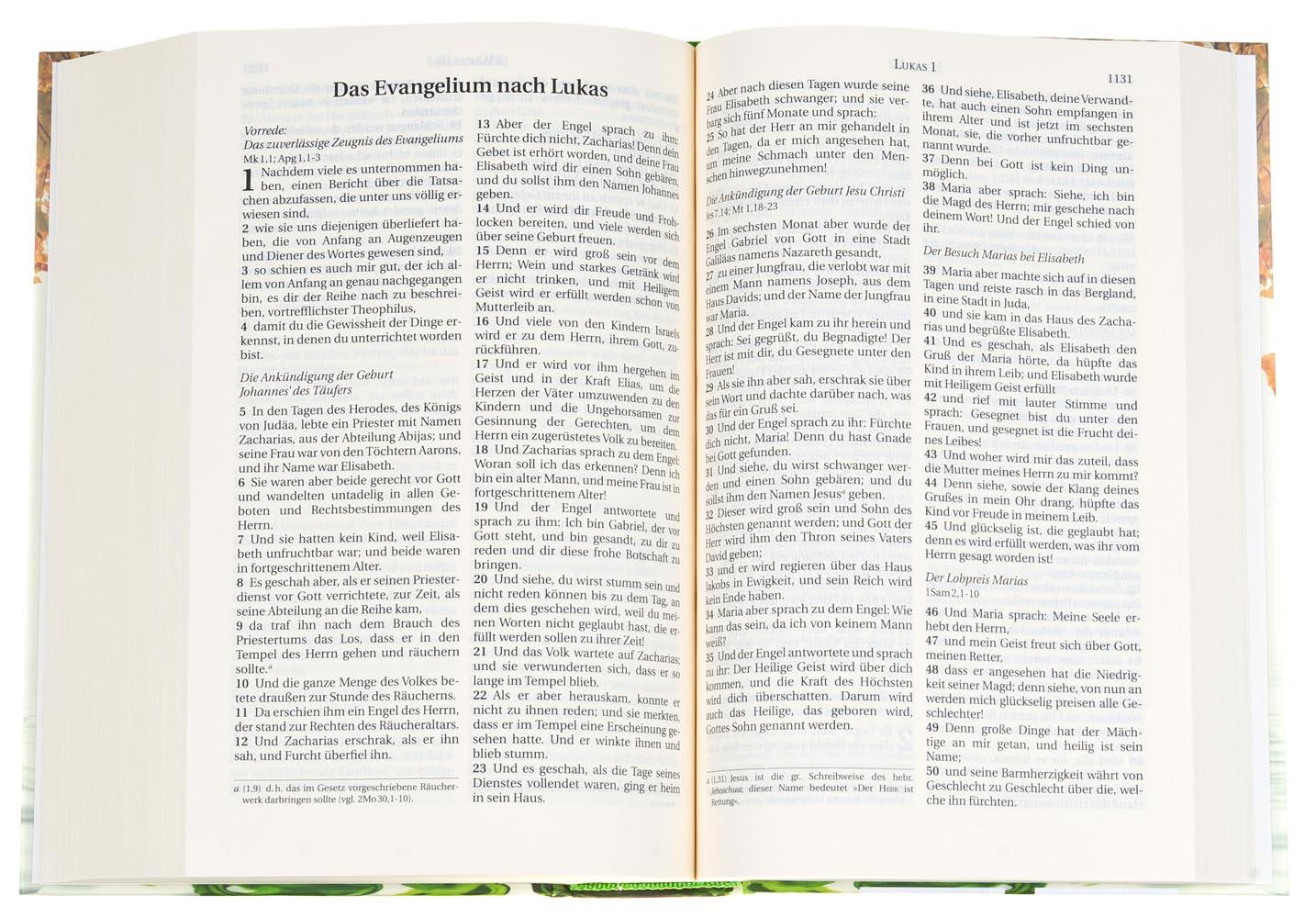 CLV_schlachter-2000-illustrierter-umschlag_255021_3
