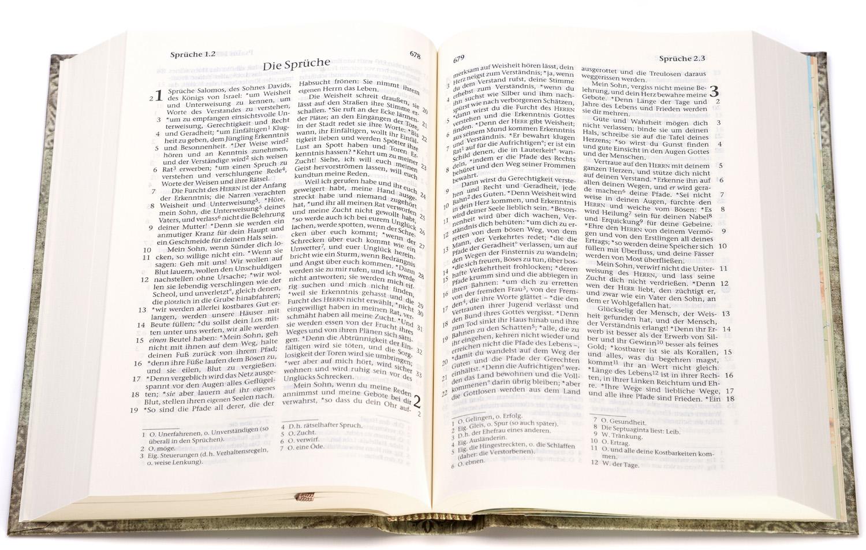 CLV_elberfelder-bibel-taschenbibel-motiv-vintage_256055_2